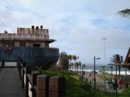 marine world, palm trees and beach
