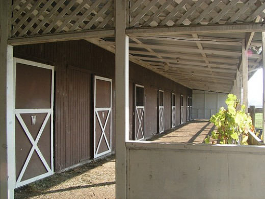 Shed row horse barn pambuda @ flickr