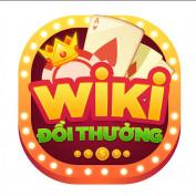 wikidoithuong profile image