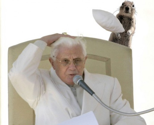 Crasher Squirrel Accidentally Attacks Pope