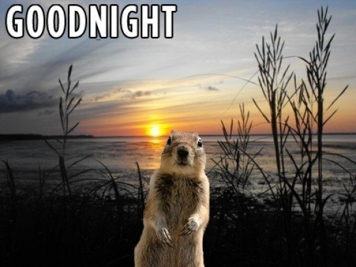 Thats a wrap. Goodnight Folks. And be sure to post a comment below telling us what you think of Crasher Squirrel.