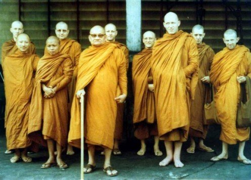 Jackfruit was used to dye the robes of these Buddhist Monks