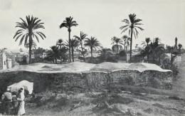 Lod in 1903