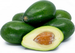 Interesting Facts About Avocado Trees And Their Fruit