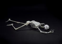 Skeleton made from plastic cutlery by Laura Bowman, Jamie Breach, Ashley Maine, Elliott