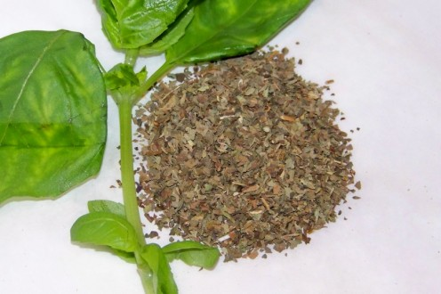 Fresh & Dried Basil