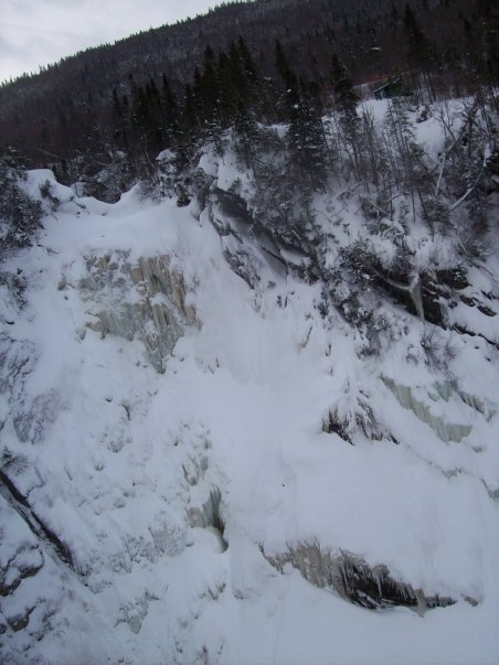 View from the Zipline! (Steady Brook Falls)