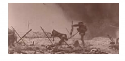 When the commander blew a whistle, our men scrambled out into the open, to get over the barbed wire and the dead; to face the guns of the enemy, who also heard the whistle!