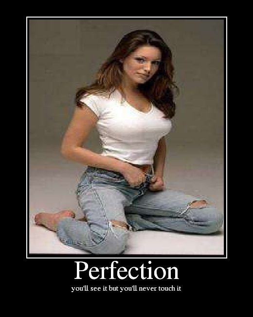 Perfection: What Do You Think?