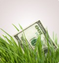 10 Ways to Save Money and Go Green