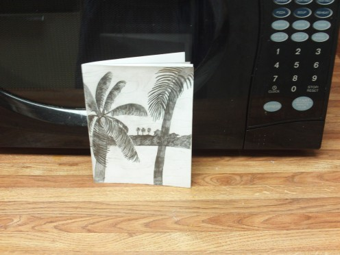 Here I have drawn the tropical scene on my card.