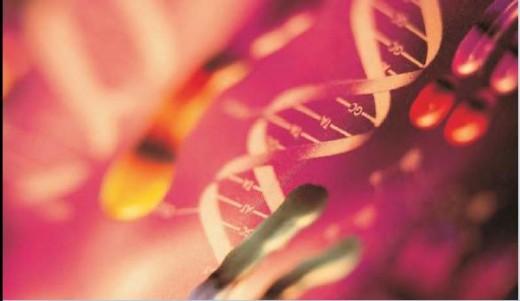Biotechnology for SWINE FLU