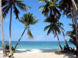 Cebu White Sand Beach