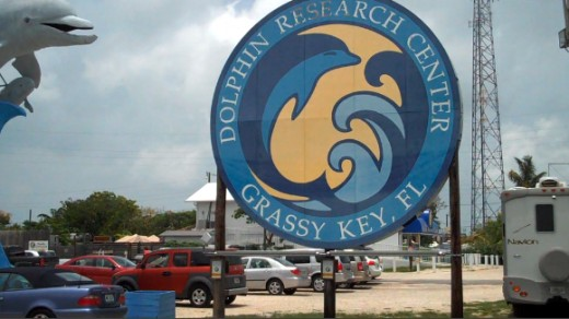 Small RV under Dolphin Research Center Sign