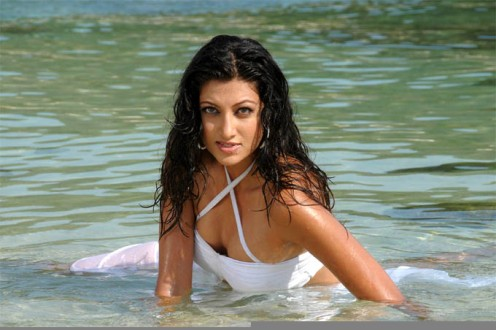 Hamsa Nandini Wet Photos