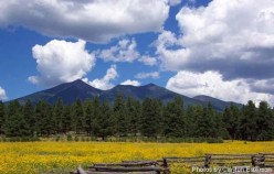 Kachina Peaks Wilderness: near Flagstaff Arizona