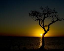 sun and sand photography