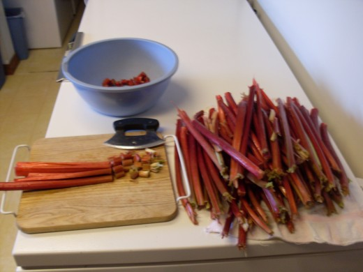 "Rhubarb contains much water, and may be chopped coursely, as it cooks down quite a bit. Aim for 1/2"" pieces. Split any thick stalks lengthwise at least once, then lay three or four pieces together, and chop them all at once."