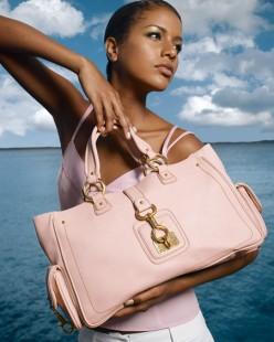chloe hand bag