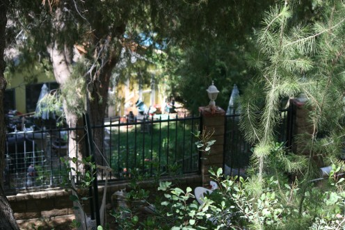 Not a huge backyard, but a sizable backyard because it has generational purpose!