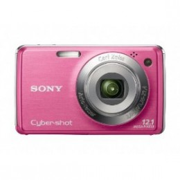 Sony Cybershot DSC-W220 12MP Digital Camera with 4x Optical Zoom with Super Steady Shot Image Stabilization