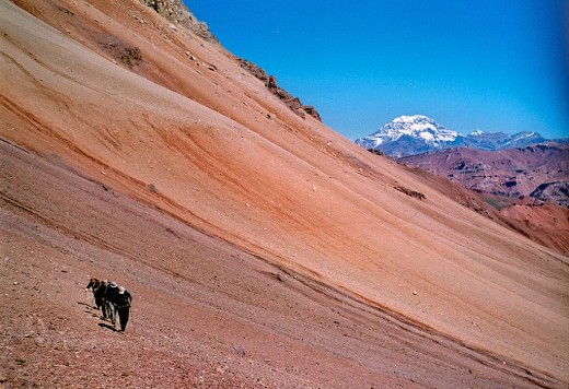 Aconcagua: Sight of the South Wall