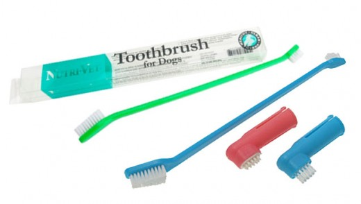 Experiment with different dog toothbrushes to find one that works for you.