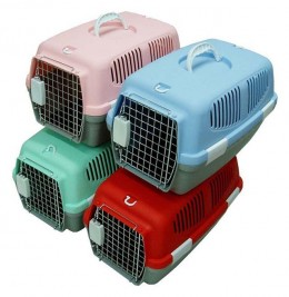 Plastic dog carriers now come in fun colors!