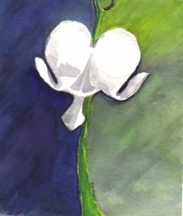 Dichotomy by Paula Atwell is available as a print on cards, t-shirts and gifts at http://zazzle.com/lakeerieartists