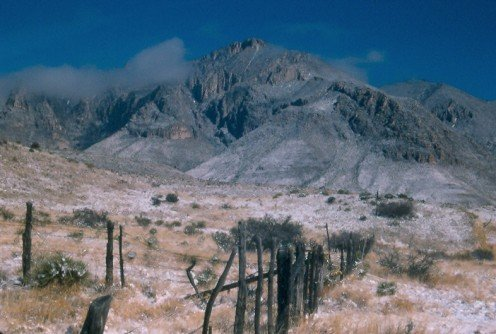 Guadalupe Mountains National Park, Texas.