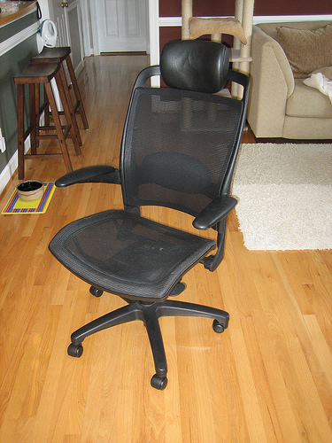 Mesh office chair.