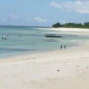 ZanzibarMagic profile image