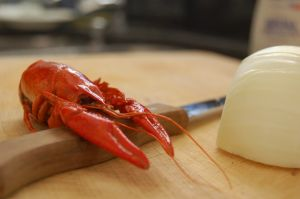 This langoustine has decided to cook his own meal.