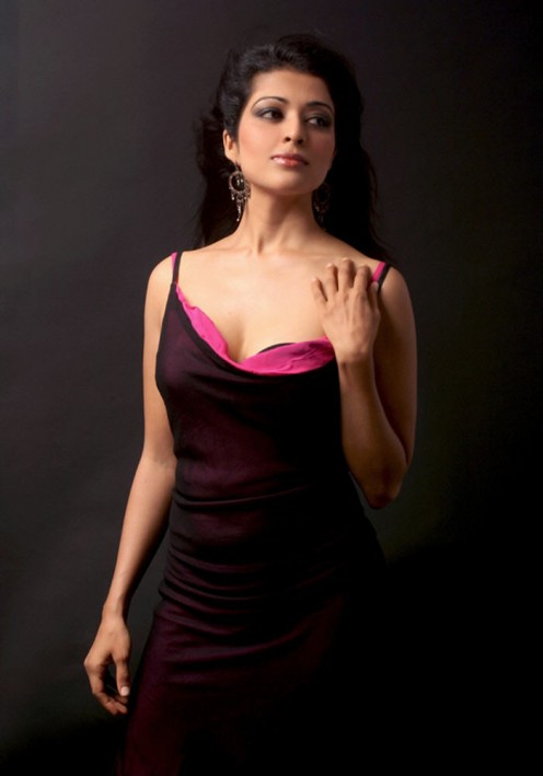 south indian hot beauties Image 6