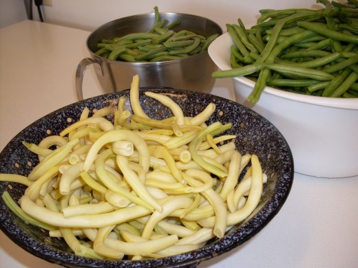 Last summer (2009) I canned three different varieties of snap beans - two overgrown French Filet types (oops), and a Yellow Wax.