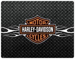 Harley Davidson Rockz