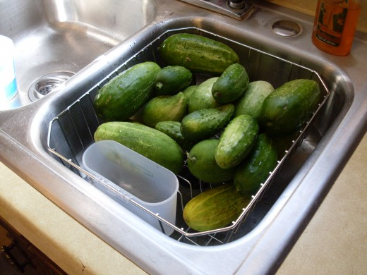 Gently scrub fresh, firm cucumbers (for best quality, pick early in the morning). Select only those with no signs of deterioration or bruising.