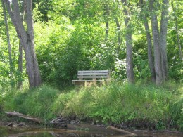 Bench on West Bank of River