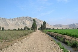 Road from Supe to Caral