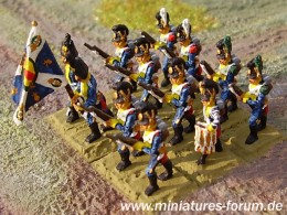 Napoleonic wars miniatures