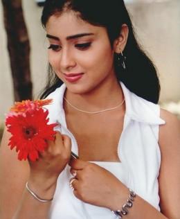 Tamil Mulai Pundai Photos Picture