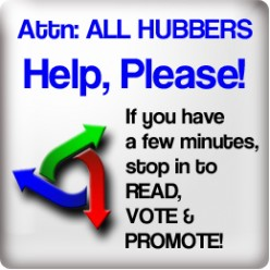 HubNuggets: Read. Vote. Promote. 09/09/2009