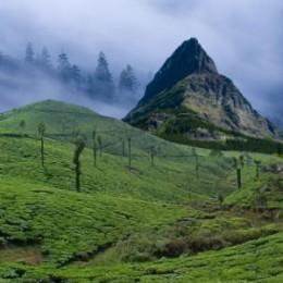 Beautiful Darjeeling India