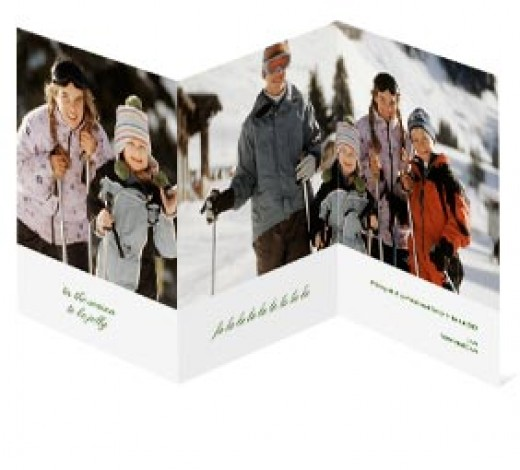 This tri-fold card allows you to have one large image covering two panels.