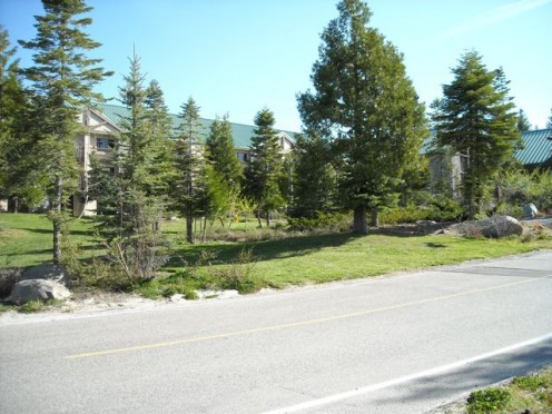 Evergreen trees, native to the region, cover the grounds to blend with the surrounding forest.