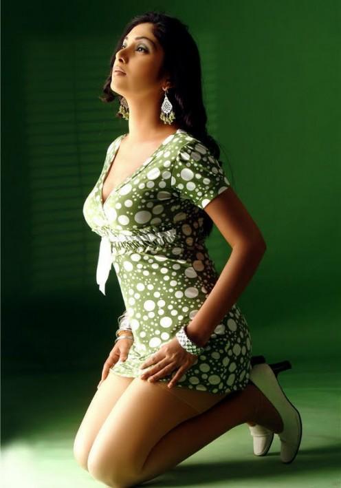 496 x 709 · 41 kB · jpeg, Mallu Actress Hot Part Elakiri Munity