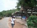 Turtle Conservation in Thailand