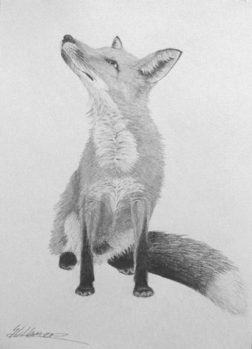 My latest achievement with simple graphite pencils, you too can feel proud of yourself!