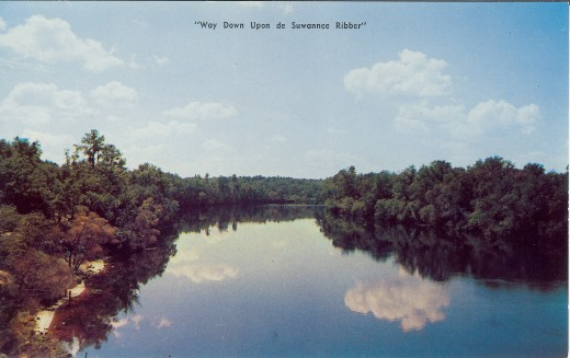 Vintage Postcard of Florida's beautiful Suwannee River
