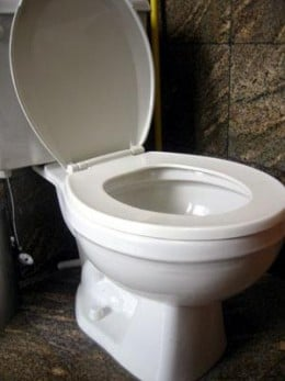 how to unclog your toilet without a plunger or chemicals